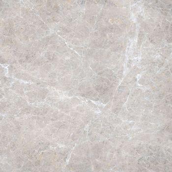 Elite Floor Silver Grey Lux 59x59