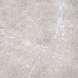 Elite Floor Silver Grey Lux 59x59